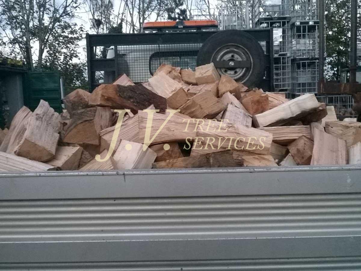 Load of logs