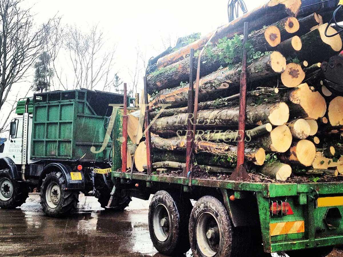 Woodland Work Image